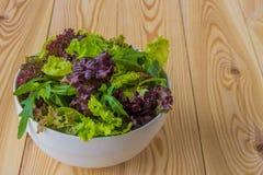 Φύλλα σαλάτας, πορφυρό μαρούλι, σπανάκι, arugula Μικτό φρέσκο sala Στοκ Εικόνες