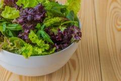 Φύλλα σαλάτας, πορφυρό μαρούλι, σπανάκι, arugula Μικτό φρέσκο sala Στοκ Εικόνα