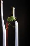 φύλλα σταφυλιών μπουκα&lambda Στοκ Φωτογραφίες