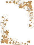 φύλλα σταφυλιών πλαισίων στοκ εικόνες