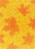 Φύλλα σφενδάμου στο ύφος grunge Διανυσματική απεικόνιση