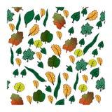 Φύλλα φθινοπώρου καθορισμένα απεικόνιση αποθεμάτων