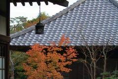 Φύλλα φθινοπώρου και κρεμώντας φανάρι του ναού Kaizo Στοκ Φωτογραφίες