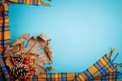 Φύλλα φθινοπώρου και κώνοι πεύκων σε ένα μπλε υπόβαθρο διάστημα αντιγράφων ανασκό&p Στοκ φωτογραφία με δικαίωμα ελεύθερης χρήσης