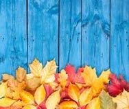 Φύλλα φθινοπώρου πέρα από την ξύλινη ανασκόπηση. Διάστημα αντιγράφων. Στοκ Εικόνα