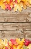 Φύλλα φθινοπώρου πέρα από την ξύλινη ανασκόπηση. Διάστημα αντιγράφων. Στοκ Φωτογραφίες