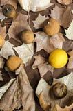 Φύλλα φθινοπώρου που διακοσμούνται με τα ξηρά λεμόνια στοκ εικόνα με δικαίωμα ελεύθερης χρήσης