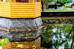 Φύλλα φθινοπώρου σε μια λίμνη Στοκ φωτογραφία με δικαίωμα ελεύθερης χρήσης