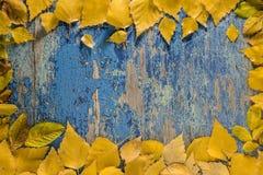 Φύλλα φθινοπώρου στο ξύλινο επιτραπέζιο υπόβαθρο Στοκ Φωτογραφίες