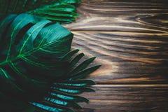 Φύλλα φοινικών σε ένα ξύλινο άσπρο υπόβαθρο Στοκ φωτογραφίες με δικαίωμα ελεύθερης χρήσης