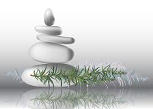Φύλλα χορταριών της Rosemary με τις πέτρες, διανυσματική απεικόνιση ελεύθερη απεικόνιση δικαιώματος