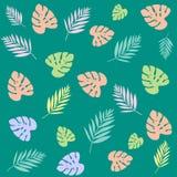 Φύλλα χρωμάτων στο πράσινο υπόβαθρο στοκ φωτογραφία με δικαίωμα ελεύθερης χρήσης
