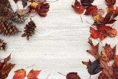 Φύλλα Foilage πτώσης σε ένα ηλικίας άσπρο ξύλινο υπόβαθρο Στοκ Εικόνα