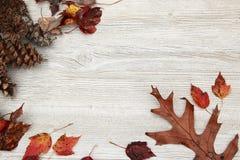 Φύλλα Foilage πτώσης σε ένα ηλικίας άσπρο ξύλινο υπόβαθρο Στοκ Φωτογραφίες
