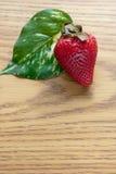 φύλλο ένα φράουλα Στοκ Εικόνες