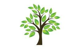 Φύλλο δέντρων διανυσματική απεικόνιση