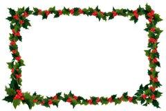φύλλο ελαιόπρινου πλαι&sig Στοκ εικόνα με δικαίωμα ελεύθερης χρήσης