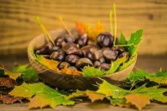Φύλλο και κάστανα φθινοπώρου στον ξύλινο πίνακα Στοκ Φωτογραφία