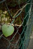 Φύλλο καρδιών στοκ εικόνα με δικαίωμα ελεύθερης χρήσης