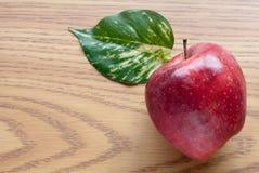 φύλλο μήλων Στοκ εικόνα με δικαίωμα ελεύθερης χρήσης