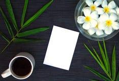 Φύλλο μπαμπού στο αγροτικό ξύλο Ασιατικό υπόβαθρο zen Κενό έγγραφο στο φύλλο μπαμπού και το λουλούδι frangipani Στοκ Φωτογραφίες