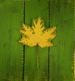 Φύλλο σφενδάμου φθινοπώρου στο ξύλινο υπόβαθρο στοκ φωτογραφία με δικαίωμα ελεύθερης χρήσης