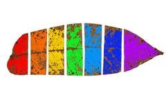 Φύλλο φθινοπώρου και όλα τα χρώματα του ουράνιου τόξου στοκ εικόνες