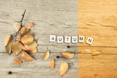 Φύλλο φθινοπώρου στον παλαιό αγροτικό πίνακα με το φθινόπωρο ` επιγραφής ` Έννοια πτώσης Στοκ φωτογραφία με δικαίωμα ελεύθερης χρήσης