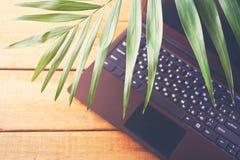 Φύλλο φοινικών και lap-top σε ένα παλαιό ξύλινο υπόβαθρο, θαλάσσιο θέμα, σε απευθείας σύνδεση εργασία r r στοκ φωτογραφίες