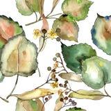 Φύλλο Linden Floral φύλλωμα βοτανικών κήπων φυτών φύλλων Άνευ ραφής πρότυπο ανασκόπησης Σύσταση τυπωμένων υλών ταπετσαριών υφάσμα Στοκ φωτογραφία με δικαίωμα ελεύθερης χρήσης