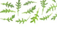Φύλλο Rucola ή arugula που απομονώνεται στο άσπρο υπόβαθρο με το διάστημα αντιγράφων για το κείμενό σας Τοπ όψη Επίπεδος βάλτε το Στοκ Εικόνα
