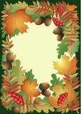 Φύλλωμα φθινοπώρου με τους καρπούς και τα μούρα Στοκ Εικόνες