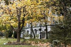 Φύλλωμα φθινοπώρου στο Μόντρεαλ, Καναδάς στοκ εικόνες