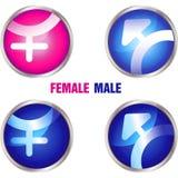 φύλο κουμπιών Στοκ εικόνα με δικαίωμα ελεύθερης χρήσης