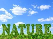 Φύση λέξης φιαγμένη από πράσινη χλόη στο μπλε ουρανό Στοκ Εικόνες