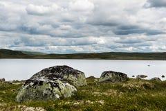 φύση αγροτική Στοκ Φωτογραφίες