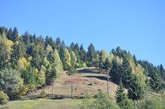 φύση βουνών σύνθεσης φθινοπώρου Στοκ Εικόνες