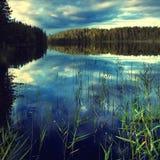 φύση καθαρή Στοκ Εικόνες