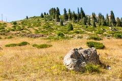 Φύση κοντά στη μεγάλη λίμνη του Αλμάτι, βουνά της Τιέν Σαν στο Αλμάτι, Καζακστάν στοκ εικόνα