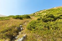 Φύση κοντά στη μεγάλη λίμνη του Αλμάτι, βουνά της Τιέν Σαν στο Αλμάτι, Καζακστάν στοκ εικόνες