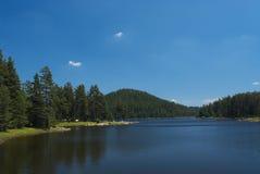φύση λιμνών Στοκ Εικόνα