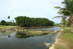 Φύση νησιών της Αρούμπα Πράσινοι δέντρα και ποταμός με τις πέτρες απέναντι Στοκ Φωτογραφία