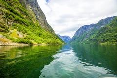φύση Νορβηγία Σκανδιναβός & Neroyfjord Στοκ φωτογραφίες με δικαίωμα ελεύθερης χρήσης