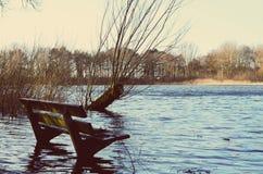 Φύση που αναλαμβάνεται Στοκ Εικόνες