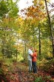 φύση ρομαντική στοκ φωτογραφία με δικαίωμα ελεύθερης χρήσης