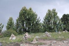 Φύση στα βουνά Altai Στοκ Εικόνα