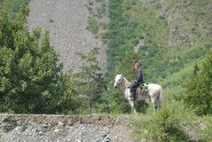 Φύση στα βουνά Altai Στοκ εικόνα με δικαίωμα ελεύθερης χρήσης