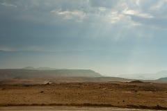 Φύση στην έρημο της νεκρής θάλασσας Στοκ εικόνες με δικαίωμα ελεύθερης χρήσης