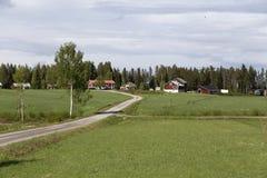 Φύση στην επαρχία Στοκ εικόνα με δικαίωμα ελεύθερης χρήσης