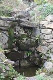 Φύση στο Eifel στοκ εικόνες
